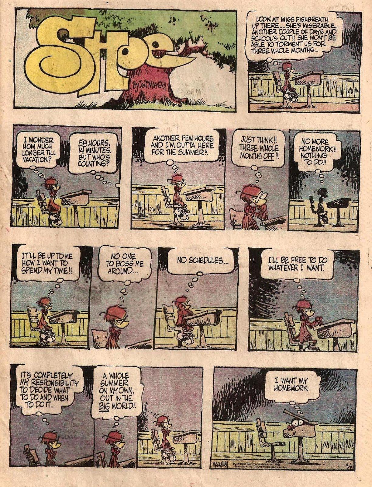 sunday comics debt skyler s essays sunday comics debt