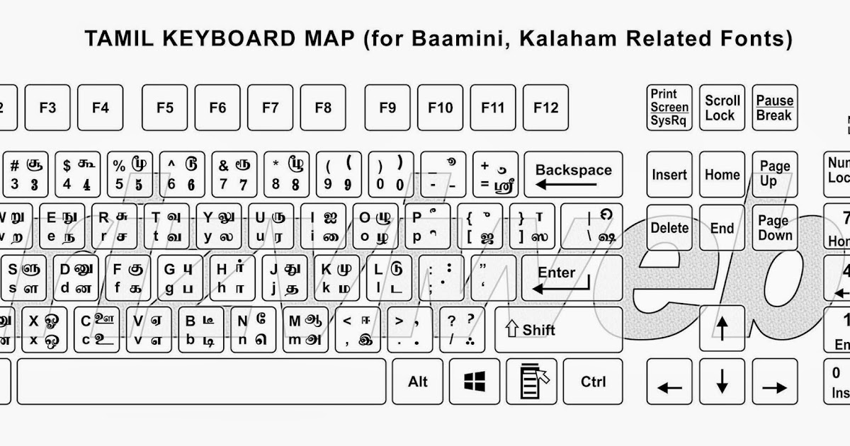 Bamini Tamil Font Software For Windows 7 - nzxilus