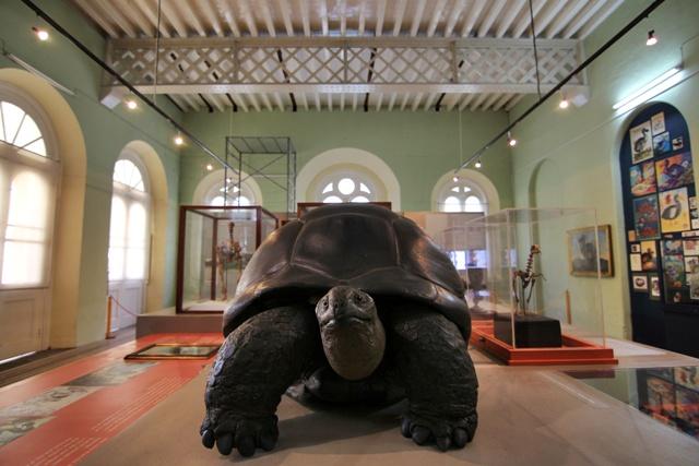 Museo de Historia Natural de Mauricio