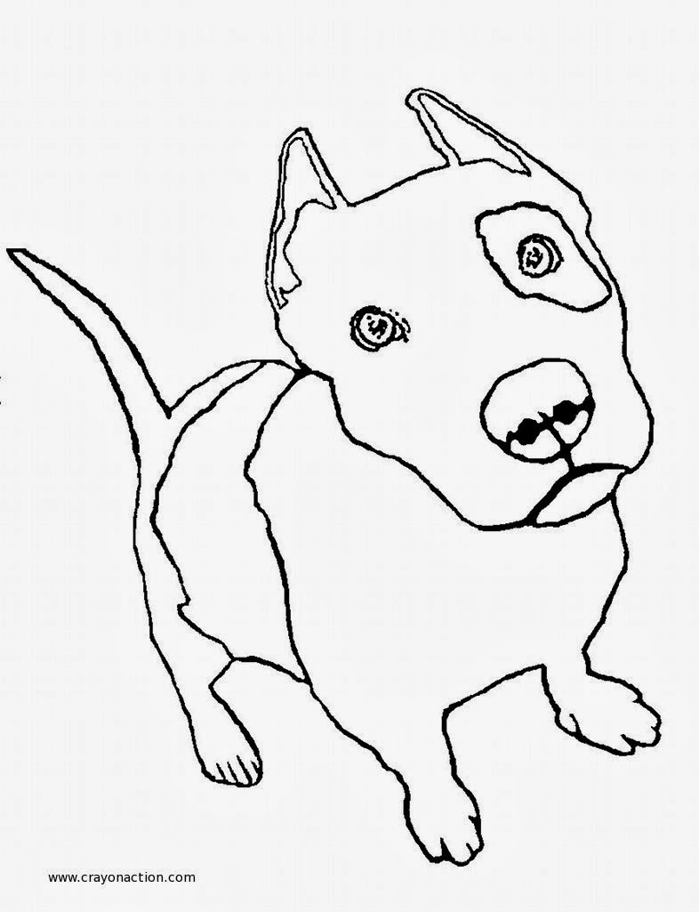 Jogos De Veterinario Desenho De Pitbull Para Colorir