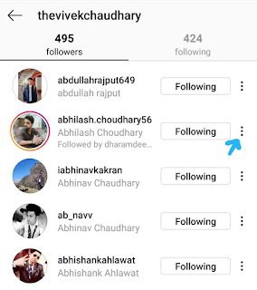 Instagram followers list