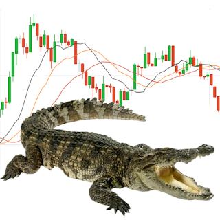 iq option alligator strategy