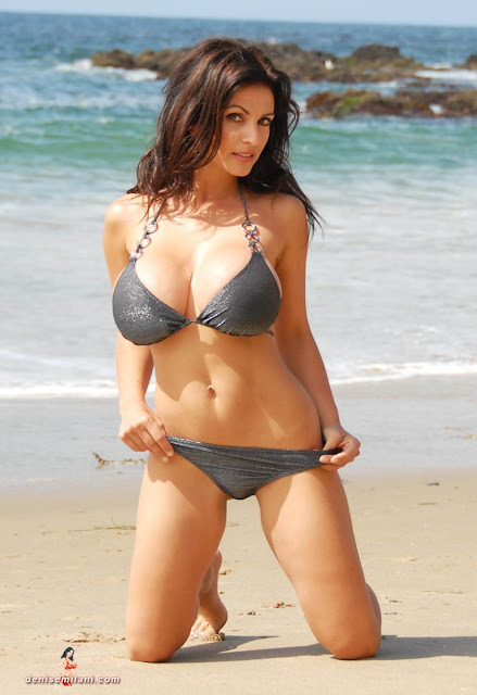 Denise-Milani-Beach-Silver-bikini-hottest-photoshoot-pics-12