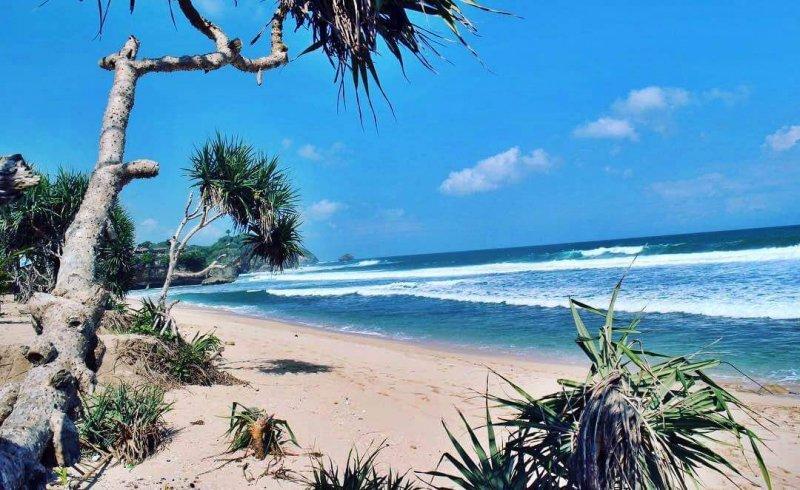 Pantai Indrayanti Gunungkidul Wonosari Yogyakarta Cahaya Malam