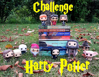 http://twogirlsandbooks.blogspot.fr/2017/07/challenge-relecture-harry-potter.html