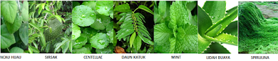 Herbal N-Green HPAI - isman
