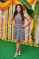 Actress Mehreen Kaur Latest 2017 Po Stills15 ~  Exclusive Celebrities Galleries.jpg