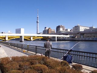 Fishing on the Sumida River, Tokyo Sky Tree in background.
