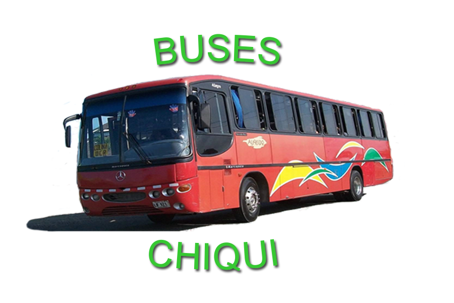 Buses chiqui