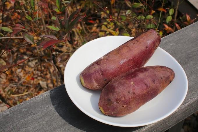 Sweet Potatoes Dish