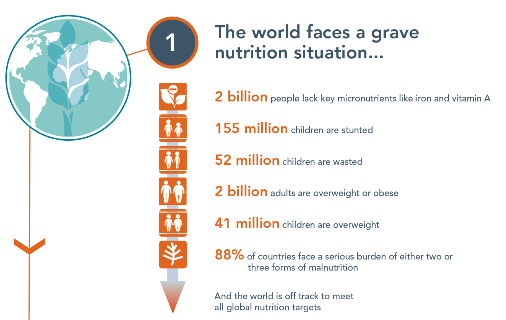 Global Nutrition Report 2018: Highlights