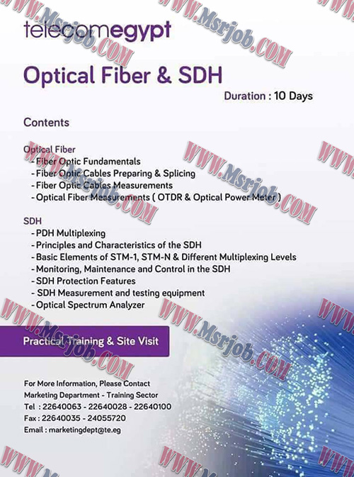 Optical Fiber& SDH