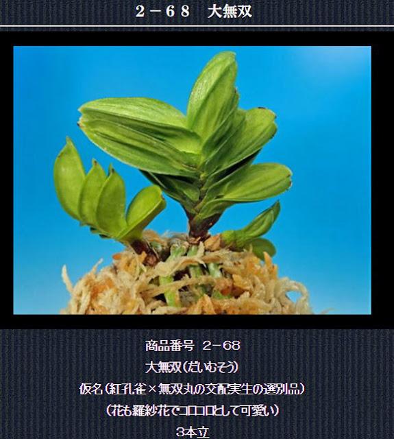 http://www.fuuran.jp/2-68.html