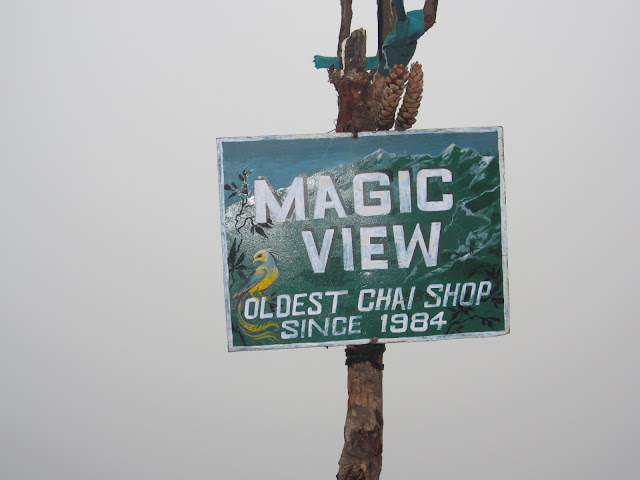 magic view shop
