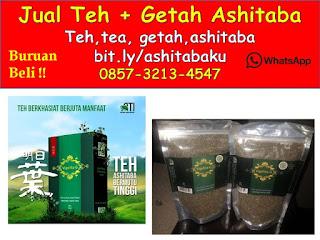 0857-3213-4547 jual Getah Ashitaba Cimahi dan jual teh AShitaba cimahi