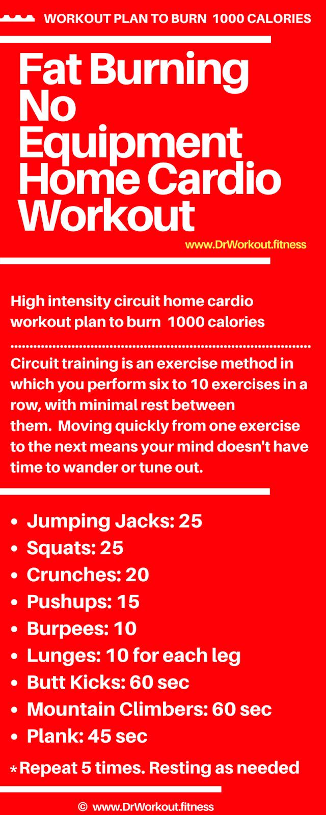 Fat Burning No Equipment Home Cardio Workout DrWorkoutfitness – Home Workout Plan No Equipment