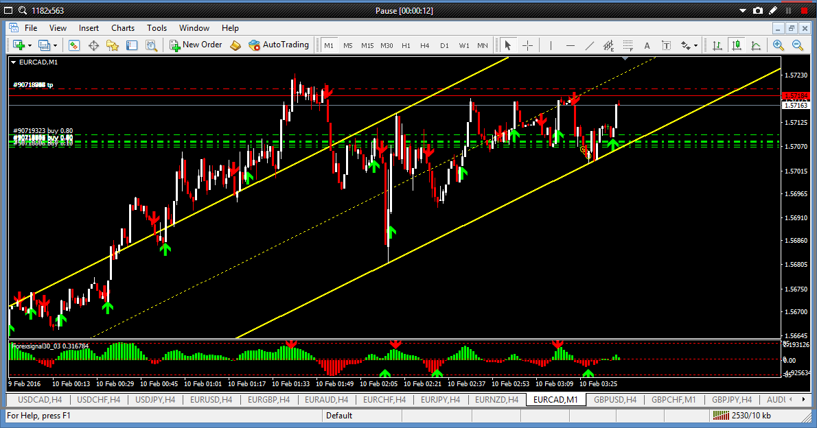 M1 forex trading