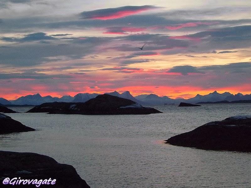 Magic Norway alba