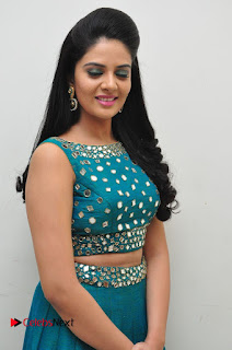 Sree Mukhi Pictures at Gentleman Audio Launch 0045