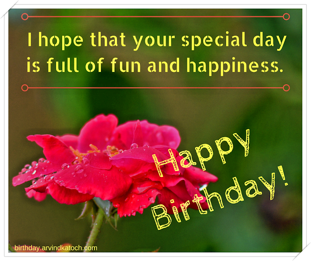 hope, special, day, full, fun, happiness, Wet Rose, Birthday Card, Rose,