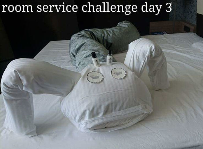 Bored Business Traveler 'Challenges' His Housekeeper In A Funny And Creative Way - The next day she found this monster!