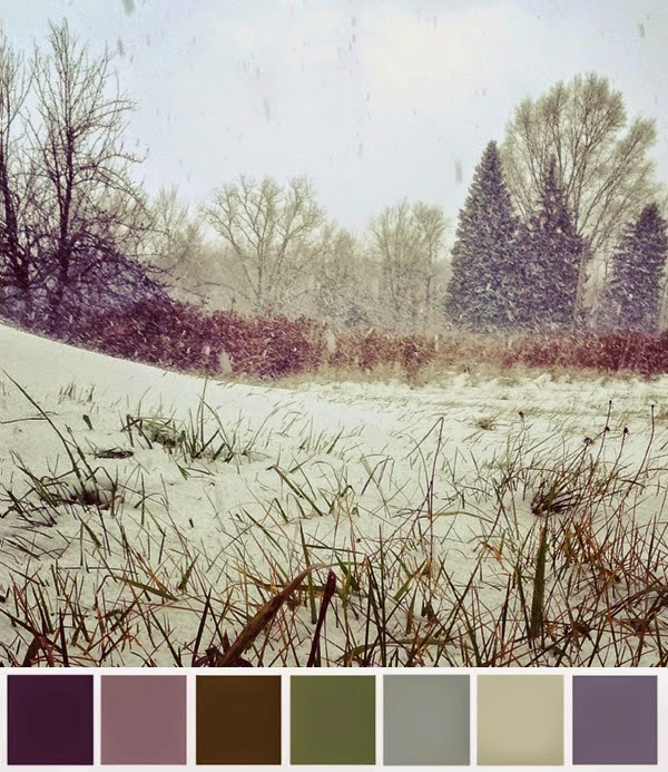 Winter Palette