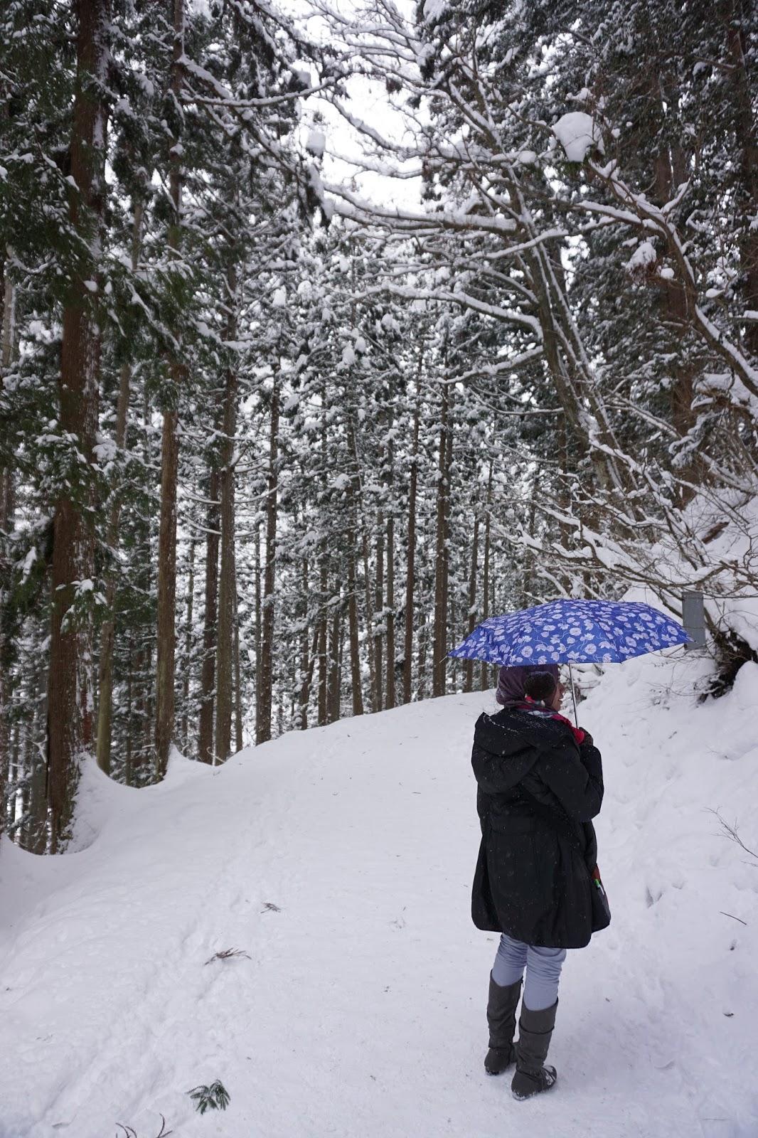 Hasil gambar untuk wanita berhijab di salju