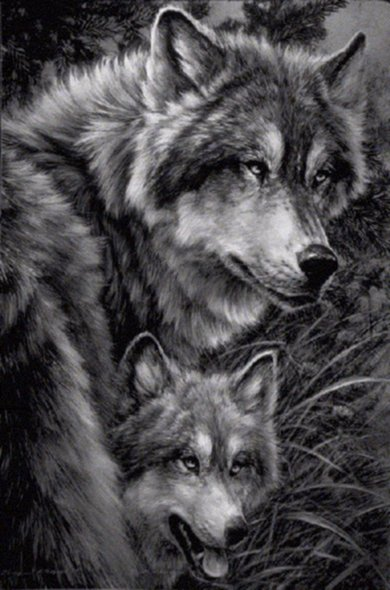 Inspired Admired Inspired By Wolves 35 Beautiful Photos