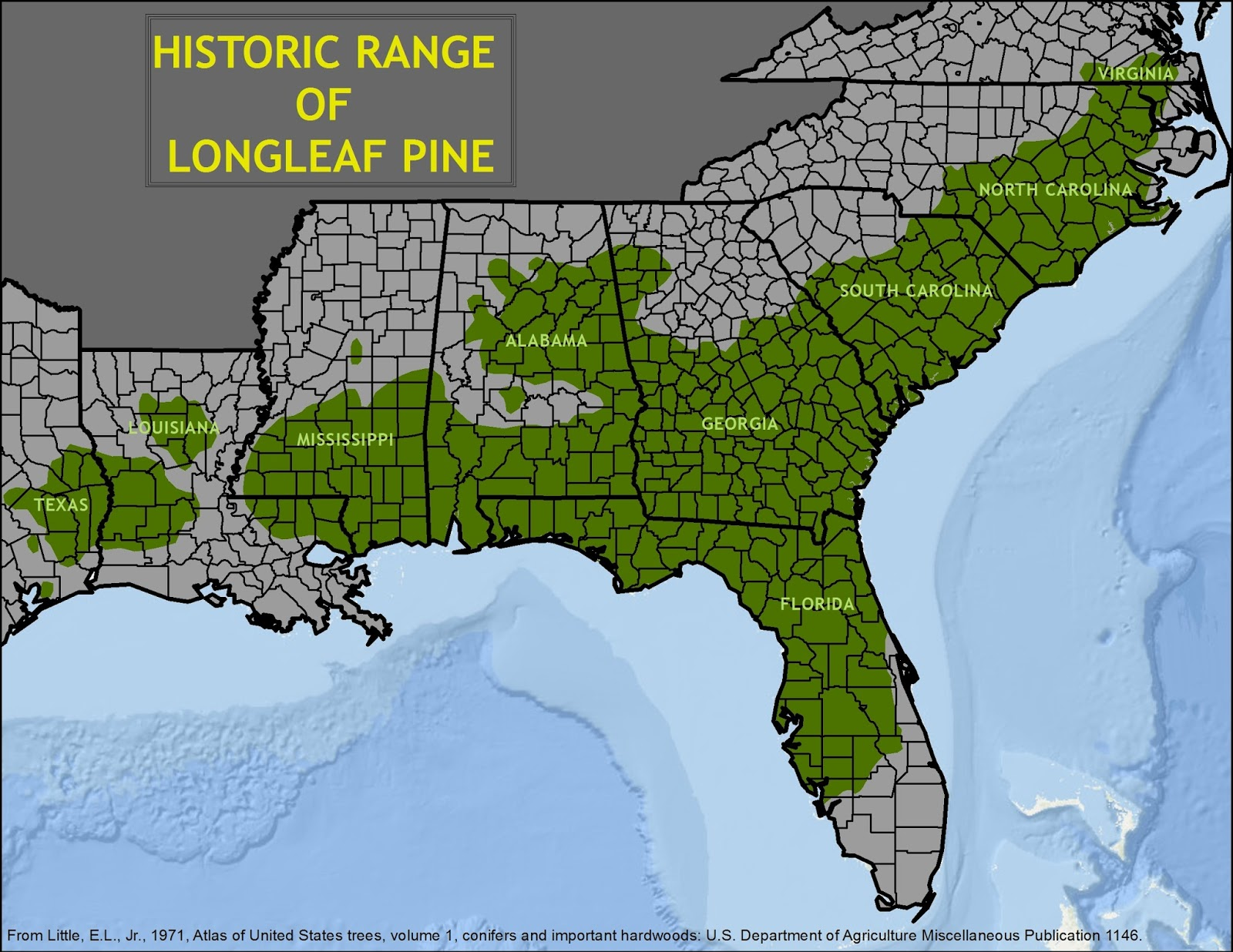 North Carolina Longleaf Coalition