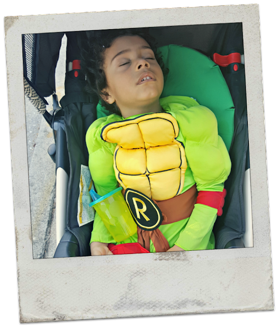 sleeping Ninja Turtle