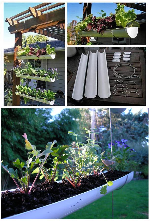 Make A Hanging Gutter Garden