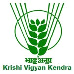 kvk-krishi-vigyan-kendra-udaipur-recruitment-career-latest-apply-online-10th-12th-degree-diploma-jobs