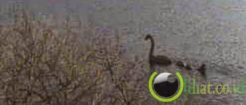 Nessie, Monster Danau Lochness