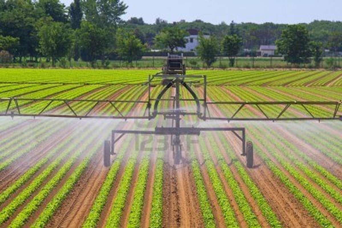 Fungsi Ilmu Biologi Dalam Bidang Pertanian Dan Industri Tips Petani