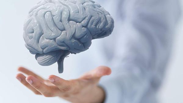 Beyin Gelişimi için Ne Yapılır?