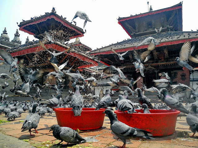 Visit Hindu Temple of Nepal