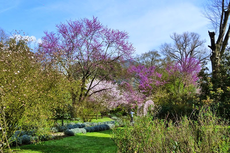 Jardim Ninfa Roma - O Jardim de Ninfa