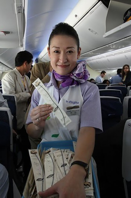 Ana Cabin Attendants In Boeing 787 World Stewardess