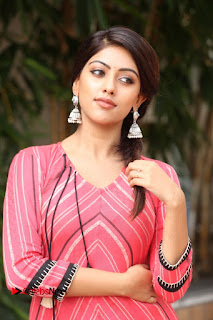 Actress Anu Emmanuel Pictures at Majnu Success Meet  0013.JPG
