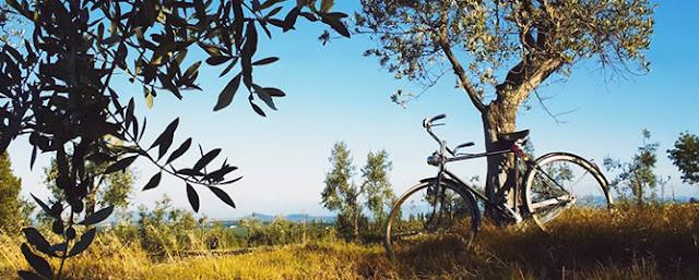 Visita la Toscana en bicicleta
