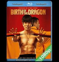 EL NACIMIENTO DEL DRAGÓN (2016) FULL 1080P HD MKV ESPAÑOL LATINO