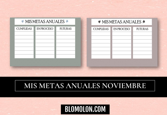 mis-metas-anuales-mes-de-noviembre