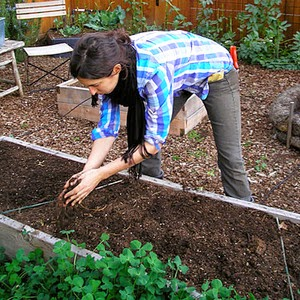 Harvesting Seeds for Sustainable Living
