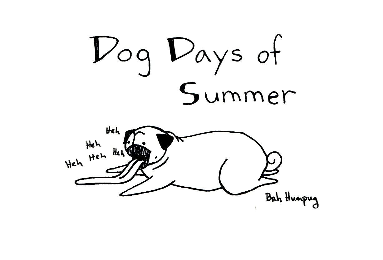 Bah Humpug: Dog Days of Summer