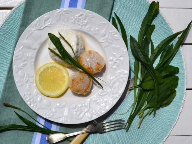Buttermilch-Mousse mit Wegerich und Jakobsmuscheln