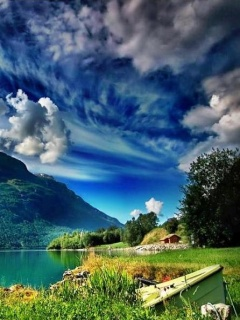 The zedge 4 beautiful nature mobile wallpapers for - Nature wallpaper 240x320 ...
