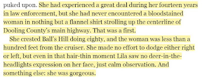 She made no effort to dodge either right or left, but even in that hair-thin moment Lila saw no deer-in-the-headlights expression on her face, just calm observation. And something else: she was gorgeous.