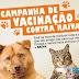 Começou a campanha de vacinação antirrábica para cães e gatos, em Piritiba