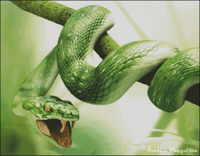 бесплатная схема для вышивки крестом змея