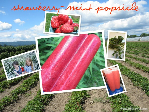 Strawberry-Mint Popsicle {#SummerOfThePopsicle Guest Post: The Not So Cheesy Kitchen} | www.girlichef.com